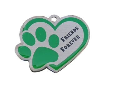 Friends Forever Travel Tag - green