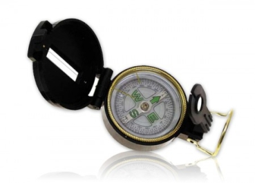 Compass with sighting device