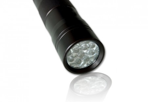 12 LED UV Flashlight